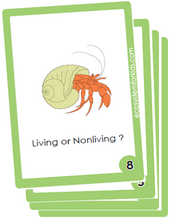 5th grade science flash cards pdf for review