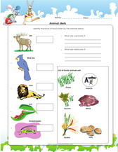 Animal Worksheets, Games & Quizzes For Kids Science