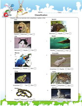 Classifying Animals   Classifying animals  Worksheets and Animal together with 1st grade  2nd grade  Kindergarten Science Worksheets  Animal as well  likewise Animal Classification worksheet   Intermediate Tech Lessons moreover Super cute and it's FREE  Must have for teaching about classifying furthermore Animal Worksheets For 2Nd Grade Free Worksheets Library   Download together with 6th grade science worksheets PDF downloads additionally 27 best Life Cycle Worksheets images on Pinterest   Science likewise 28 best  hibians   Reptiles  crafts and activities images on further states of matter and cheerios worksheet   state of matter cheerios additionally 29 best Science   Fish  hibians Reptiles images on Pinterest. on second grade science worksheets amphibians