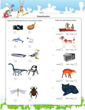 math worksheet : classification of anisms games worksheets for kids : Living And Nonliving Things Worksheets For Kindergarten