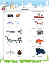 2nd grade science worksheets for practice pdf. Black Bedroom Furniture Sets. Home Design Ideas