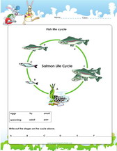 Ecosystems  games  worksheets  quizzes for kids furthermore 7th Grade Science Practice Worksheets Ecosystem Worksheets together with Biomes   Ecosystem Worksheet Unit Plan for Teachers in addition science worksheets ecosystem   Biology Worksheet   Get Now DOC likewise Ecosystem Lesson Plans 3rd Grade Worksheet Ecosystems Free Printable besides 3rd grade science activity worksheets PDF besides 3rd grade science activity worksheets PDF together with Ecosystem Worksheets 4th Grade For Learn   Math Worksheet for Kids in addition Energy in an Ecosystem Worksheet moreover Ecosystem Worksheets   Biotic  Abiotic Lesson Resources together with Ecosystems Worksheets Teaching Resources   Teachers Pay Teachers moreover 341 best Science images on Pinterest   Science activities  Science also Protecting Forests   Worksheet   Education additionally Kids Ecosystem Worksheets For And Ecosystems Coloring Middle moreover Potion   munity   Ecosystem Worksheet as well . on ecosystem worksheets for 3rd grade