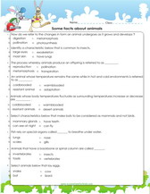 Fun and Interactive Preschool Worksheets - EZ Worksheet