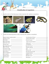 Classification of organisms, games, worksheets for kids