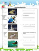 Classification of organisms worksheet high school