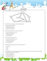 plant kingdom science for kids games worksheets. Black Bedroom Furniture Sets. Home Design Ideas